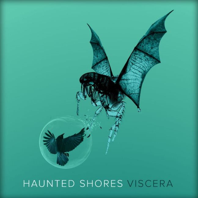 Haunted Shores _ Viscera