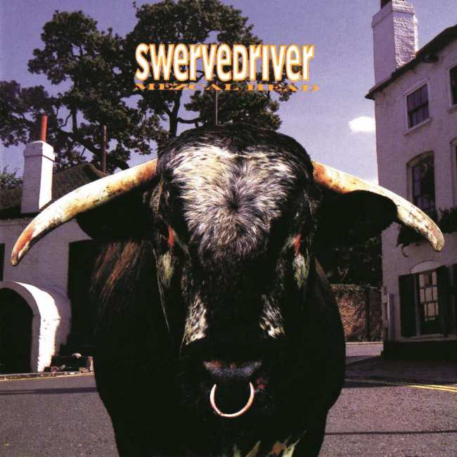 swervedriver-mezcal-head.jpg